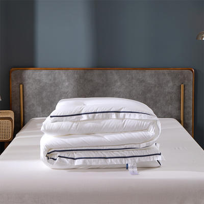 抗菌-被子五星级酒店保暖四季冬季被芯加厚双人单人棉被褥 200X230cm冬被7.5斤 西雅图