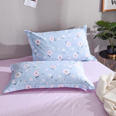 2019新款全棉单品枕套 48cmX74cm/对 花开朵朵