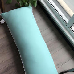 1.2米 1.5米 羽丝绒长枕 45x120cm 长枕(湖蓝)
