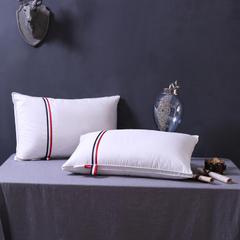 精品羽绒枕系列 欧版羽绒枕(48x74cm)