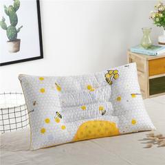 磁疗保健枕 磁疗保健枕-蜂胶