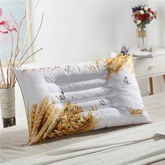 薰衣草养身枕 荞麦养身枕