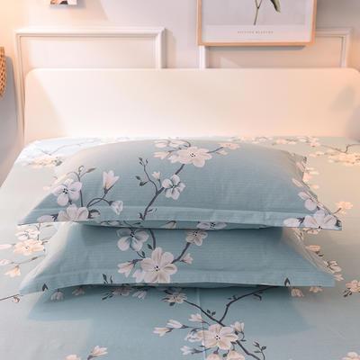 2019新款全棉活性生态磨毛单枕套 48cmX74cm/对 浅春含香