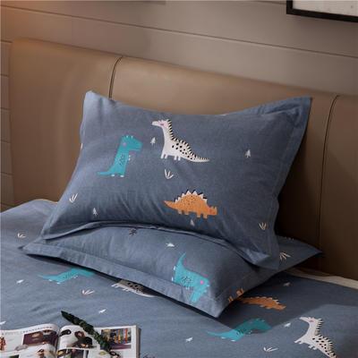 2019新款全棉活性生态磨毛单枕套 48cmX74cm/对 侏罗纪