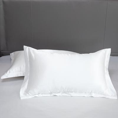 2021夏季新款-水洗冰丝真丝单枕套 可供跨境亚马逊等 48cmX74cm/对 白色