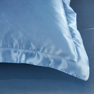 2020新款-冰丝真丝单品枕套(专供跨境电商亚马逊等 ,出口外贸定做 ) 48cmX74cm/一对 浅蓝色