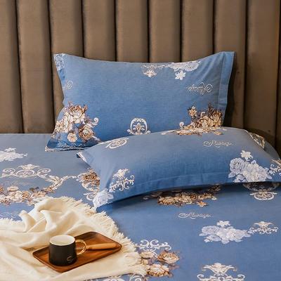 2020新款全棉活性生态磨毛纯棉单枕套 48cmX74cm/对 问情流露-蓝