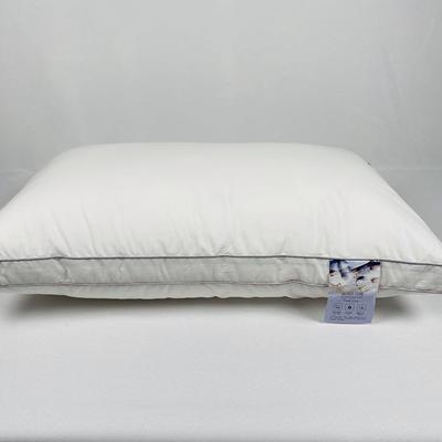 2020新款蚕丝美容枕枕头枕芯-48*74cm/只 蚕丝美容枕