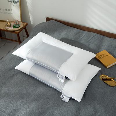2020新款天丝舒柔枕头枕芯 48*74cm灰色