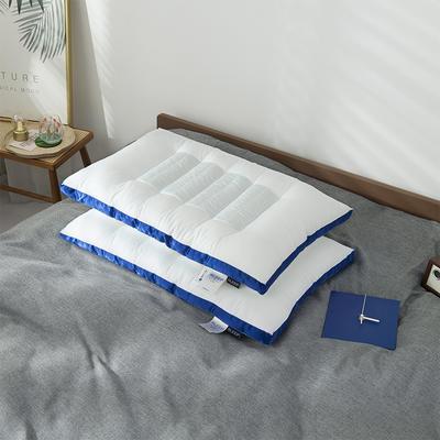 2020新款荞麦两用枕头枕芯 48*74cm蓝色