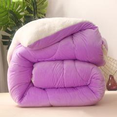 水晶绒冬被 羊羔绒被芯 加厚保暖被子学生被 180x220cm(6斤) 香芋紫
