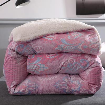 (总)6D雕花绒拆卸款被子羊羔绒冬被法莱绒单被套可拆洗多功能 150x200cm(单被套) 菲欧娜