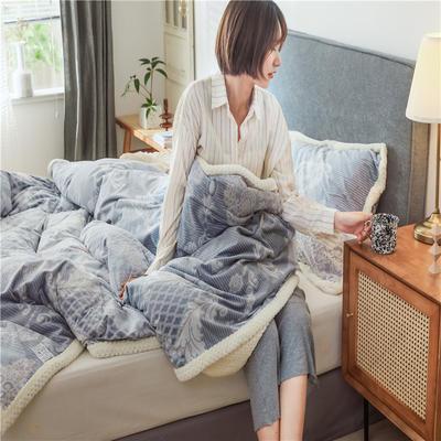 (总)多功能被套毯6D雕花绒可脱卸拆洗被子贝贝绒冬被保暖被芯 150x200cm(单被套) 尼克斯