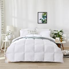 2018新款水洗棉羽绒被 200X230cm5.8斤 白色