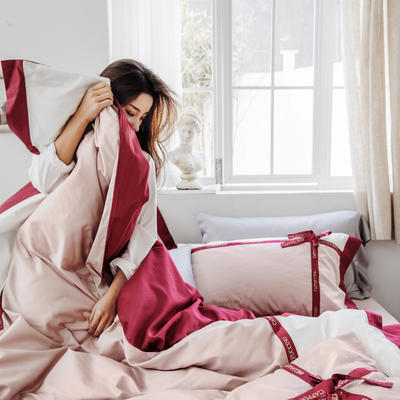 2019新款60刺绣工艺款四件套 2.0m(6.6英尺)床单款 卡布奇诺(红)
