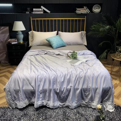 2019新款-铂金大豆夏被 200X230cm 灰紫