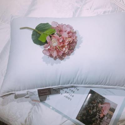羽绒枕(柔赛丝羽绒枕)48x74cm 柔赛丝羽绒枕