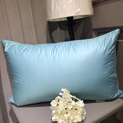 2018新款臻品鹅毛枕 48*74cm 蓝色