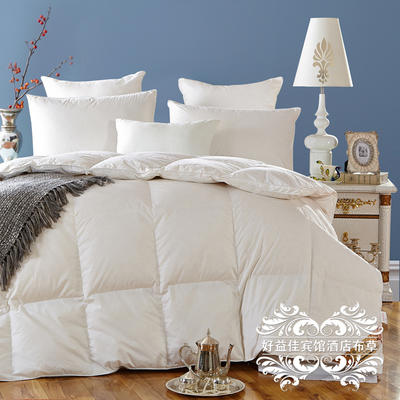 白鸭绒羽绒冬被 180x220cm 白