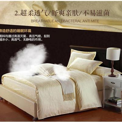 宾馆四件套牵牛花 2.0m(6.6英尺)床 米白
