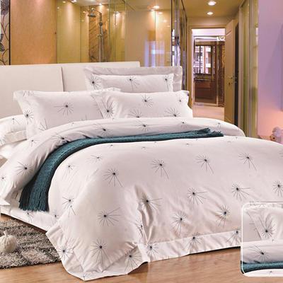 印花系列四件套 1.5m(5英尺)床 3