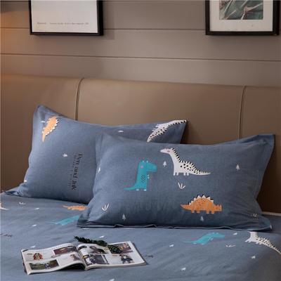 2019新款全棉生态磨毛单枕套 48cmX74cm/一对 侏罗纪