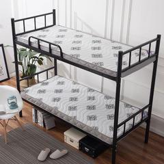 记忆棉单人床垫(宜家风) 1.0 * 1.9m 别具一格10cm