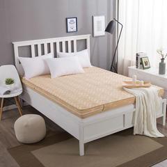 简约风 拆洗记忆棉床垫 1.2*2.0m*9cm 驼色
