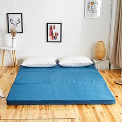 6色:可折叠高密度海绵床垫 (5公分) 1.2x2m 宝蓝