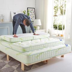 2019新品清凉一夏  记忆棉床垫莫代尔 3D 8-11CM 0.9X2 莫代尔针织立体 绿色8CM