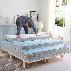 2019新品清凉一夏  记忆棉床垫莫代尔 3D 8-11CM 0.9X2 3D透气立体款 天蓝款8CM