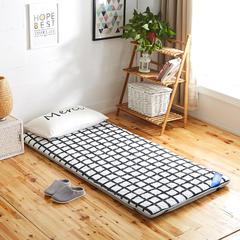 2019新品加厚5厘米款 全棉透气单人床垫系列 0.9X2 霖