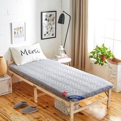 2019新品加厚5厘米款 学生床垫磨毛AB版透气床垫 0.9*1.9 灰色AB版
