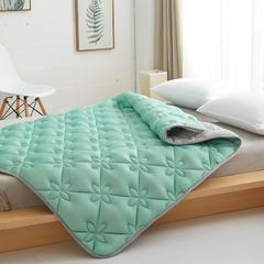 2019新品加厚2厘米特种绗缝乳胶床褥 0.9*2 乳胶床褥水蓝