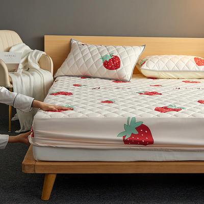 水洗棉防水夹棉床笠 120cmx200cm 床笠款-甜心草莓