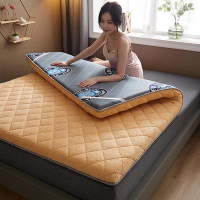 保暖舒适AB版双面用羊羔绒床垫 0.9*2.0m 羊羔绒-AB版两用驼色