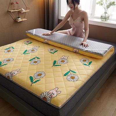 保暖舒适AB版双面用羊羔绒床垫 0.9*2.0m 牛奶绒-向日葵