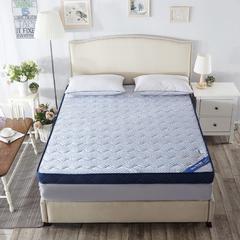 记忆棉床垫-蓝色颗粒(6.5CM) 0.9*1.9米 蓝色颗粒