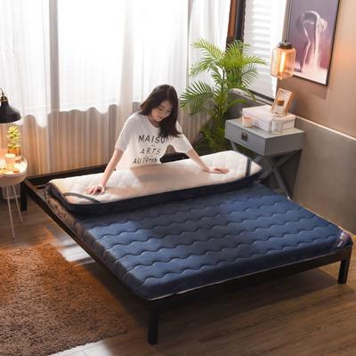 2019新款-冬夏两用加厚保暖法兰绒床垫( 10cm) 0.9*2 蓝白
