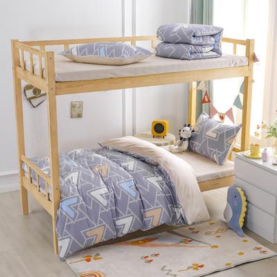 2021新款正宗13372纯棉学生宿舍上下铺三件套 155*205cm被套床单款三件套 柏拉图之梦