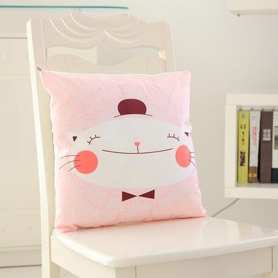 韩国绒抱枕 40*40cm单套 微笑猫咪