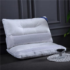 2019新款全棉半网荞麦羽丝绒枕(48*74cm) 白色