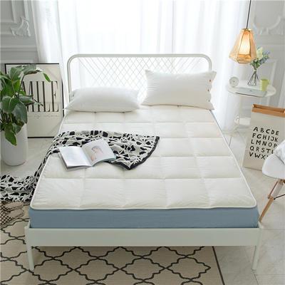 2018新款床垫 90*200cm 极地白