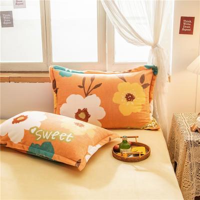 2020新款牛奶绒单品枕套 48cmX74cm/对 甜蜜朵朵
