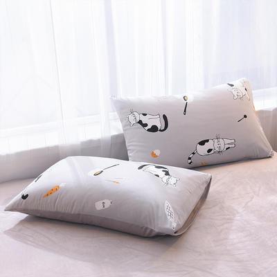 2019秋冬新品 水晶绒保暖单品枕套 48cmX74cm/一对 拉面