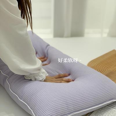 2021新款全棉羽丝绒枕芯47*74cm/对 紫色