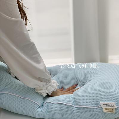2021新款全棉羽丝绒枕芯47*74cm/对 蓝色