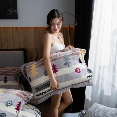 2019新款金貂绒牛奶绒单品枕套 48cmX74cm/对 从林物语
