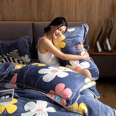 2019新款金貂绒牛奶绒单品枕套 48cmX74cm/对 简约花朵