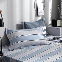 菲梵家纺  2019新品全棉印花亲肤单品枕套 48cmX74cm/一对 八度空间